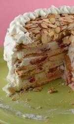 Frozen Strawberry Cream Torte
